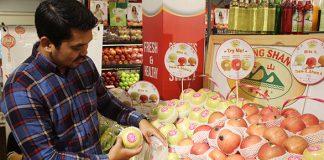 distributor buah dan sayur di Jakarta